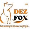 Компания Дезфокс