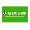 atemishop.ru интернет-магазин