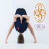 В Центре йоги и здоровья «Сфера»